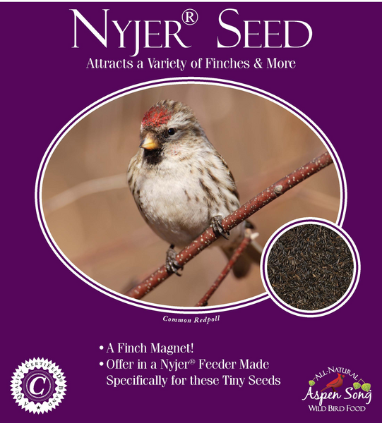 Aspen Song Nyjer (Thistle) Seed - 3 lbs.