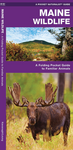 Pocket Naturalist Guide-Maine Wildlife