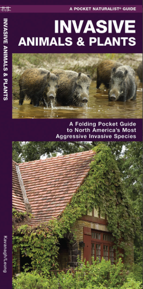 Pocket Naturalist Guide-Invasive Animals & Plants