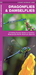 Pocket Naturalist Guide-Dragonflies & Damselflies