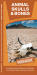 Pocket Naturalist Guide-Animal Skulls & Bones