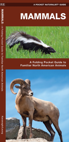 Pocket Naturalist Guide-Mammals