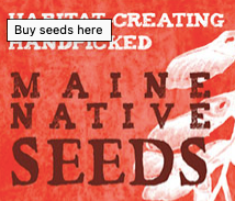 Native Seed Assortments from Wild Seed Project