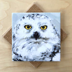 Trivet by Art by Alyssa-Snow Owl