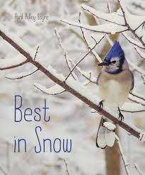 Best in Snow - Hardcover