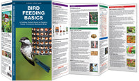 Pocket Guide-Bird Feeding Basics