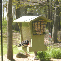 Tall Green Hopper Feeder with Suet Holders