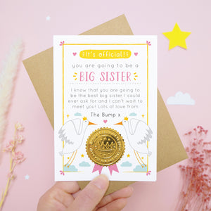 A big sister pregnancy announcement card featuring storks, clouds and a note from the bump. The card is being held over a pink background with dried flowers, stars and a cloud.