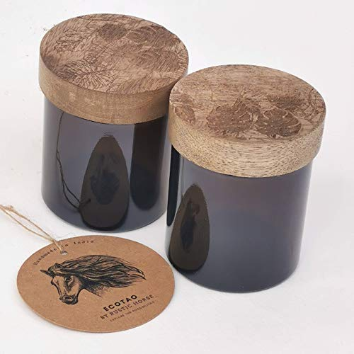 RUSTIC HORSE Artsy Wood and Glass 100ml Kitchen jar for Storage and Decor. Set of 2 (Island)