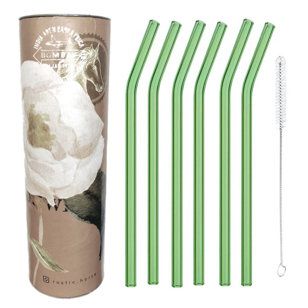Going Green Glass Straws, Pack of 6 with Brush