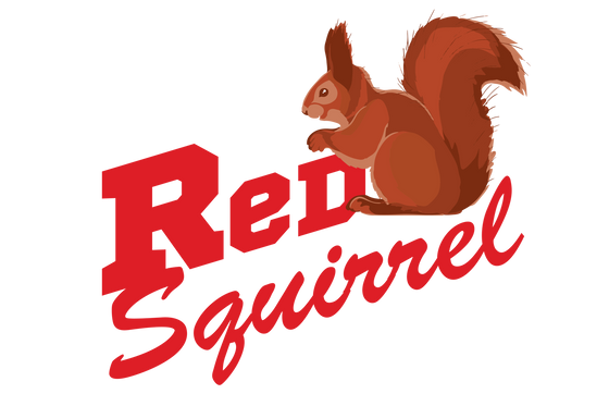 Comedian Red Squirrel