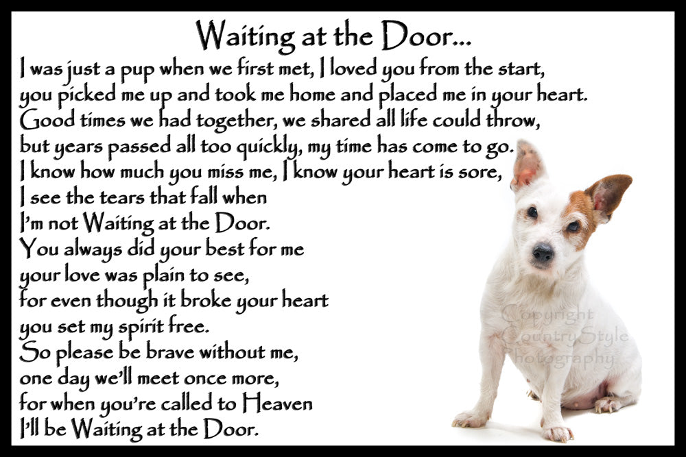 Jack Russell Terrier Pet Memorial Flexible Fridge Magnet