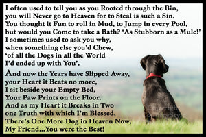 Pet Dog Memorial Flexible Magnet with a choice of exclusive verses