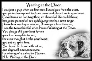 Bulldog rainbow bridge pet memorial gift
