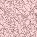 Pink Feathers | W1063