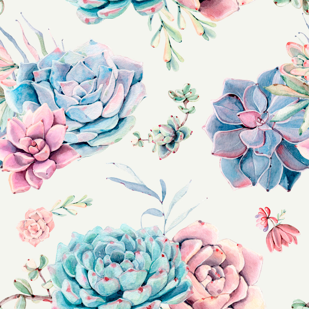Large Floral Succulents W1080