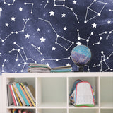 Galaxy Constellation Wall Mural | W1235