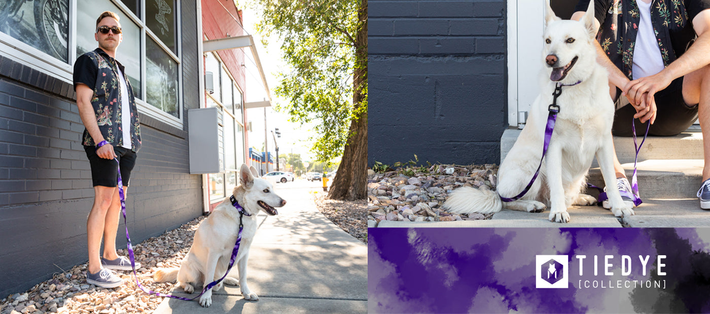 man with mustache and shorts standing with dog in front of building.