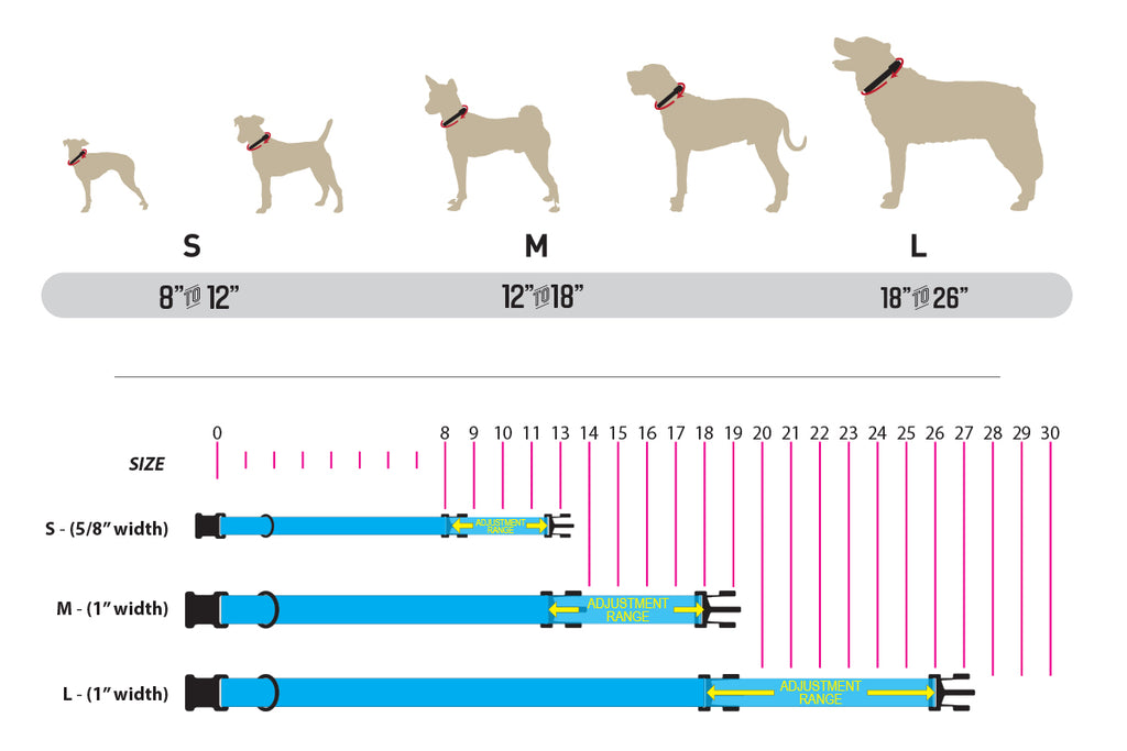 COLLAR, HARNESS & LEASH SIZING INFORMATION – Wolfgang Man & Beast