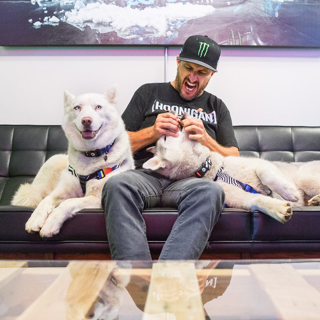 Ken Block on couch with Yuki & Bentley.