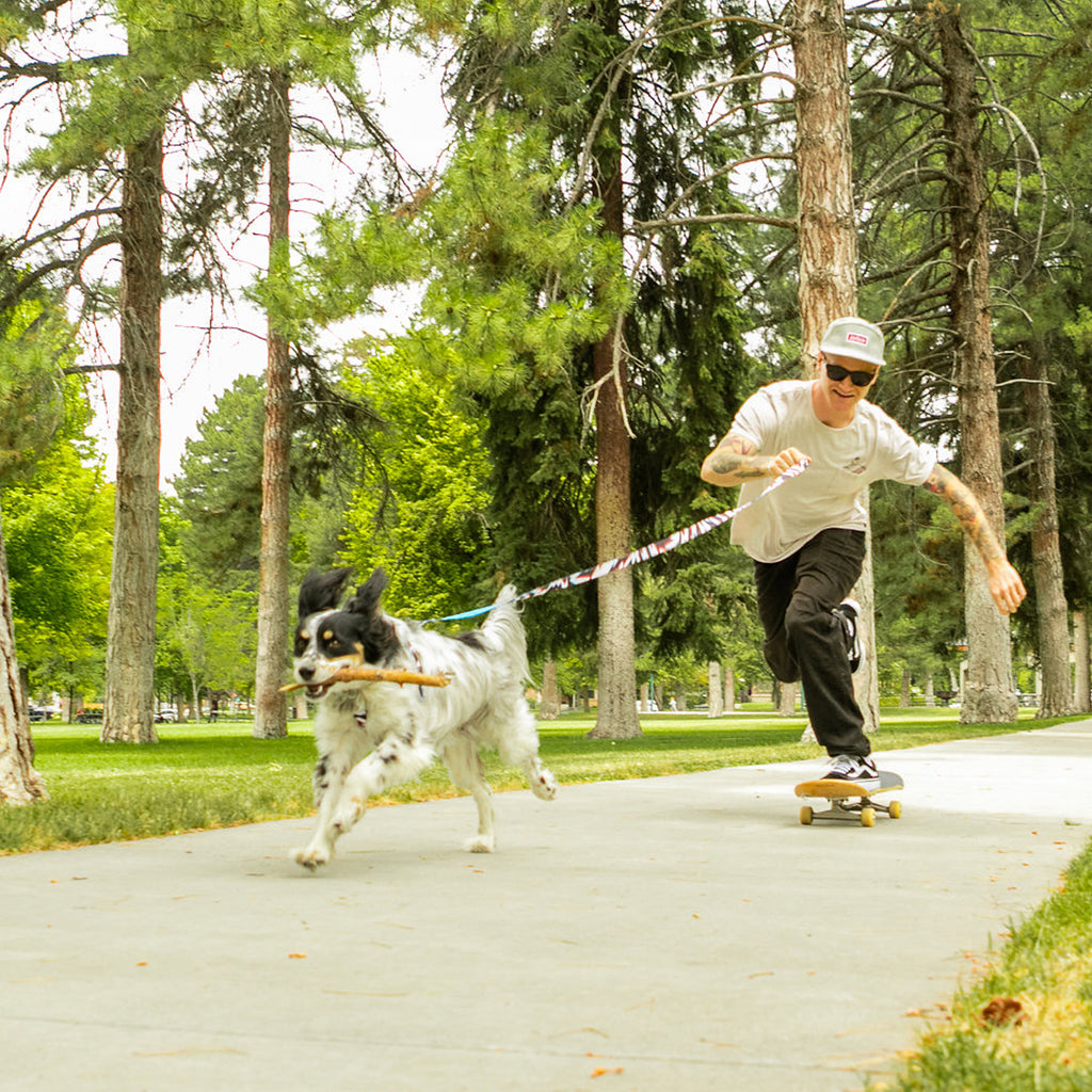 Pat Moore pushing on his skateboard in a park with his dog, Murphy, running out front on a leash.