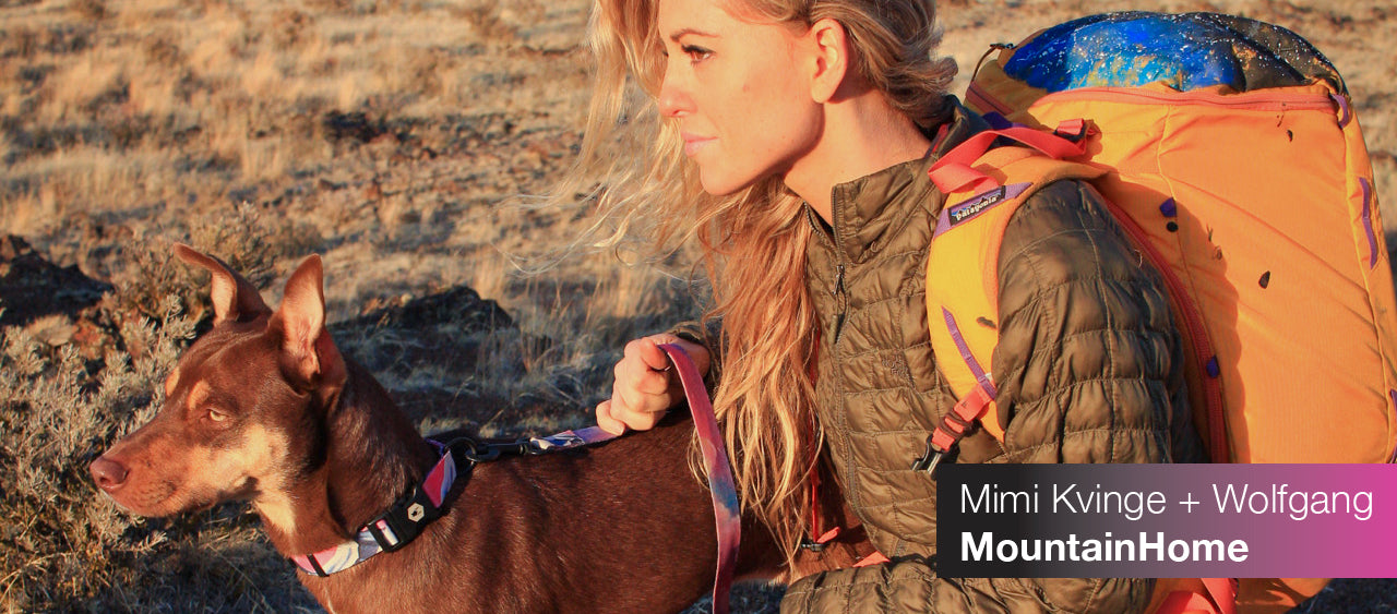 Mimi Kvinge with dog wearing Mountain Home collar and leash at sunset. Links to Mountain Home collection.