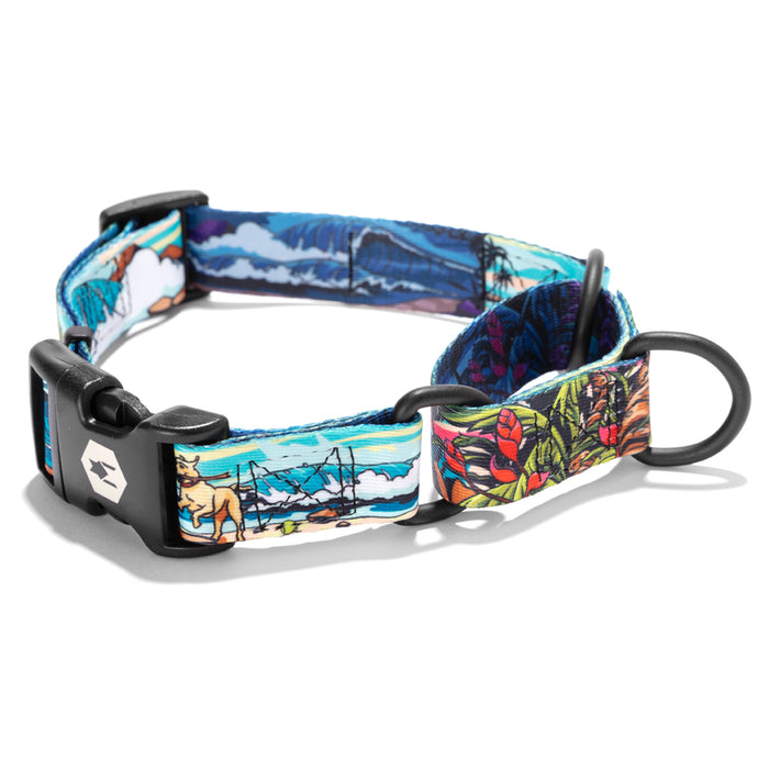 BeachBreak MARTINGALE DOG COLLAR-Wolfgang Man & Beast