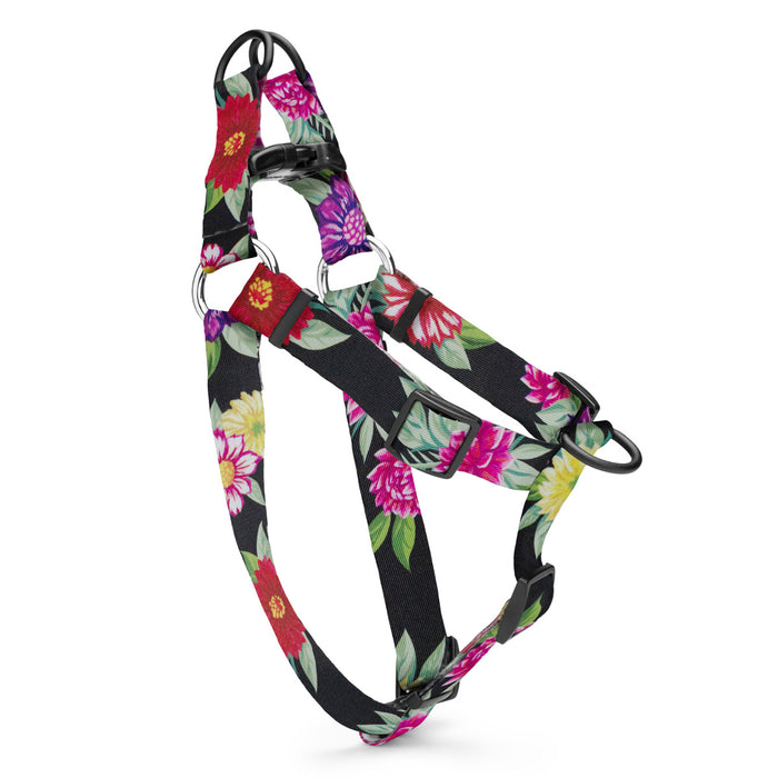 Colorful floral designs on a black background, on a harness.