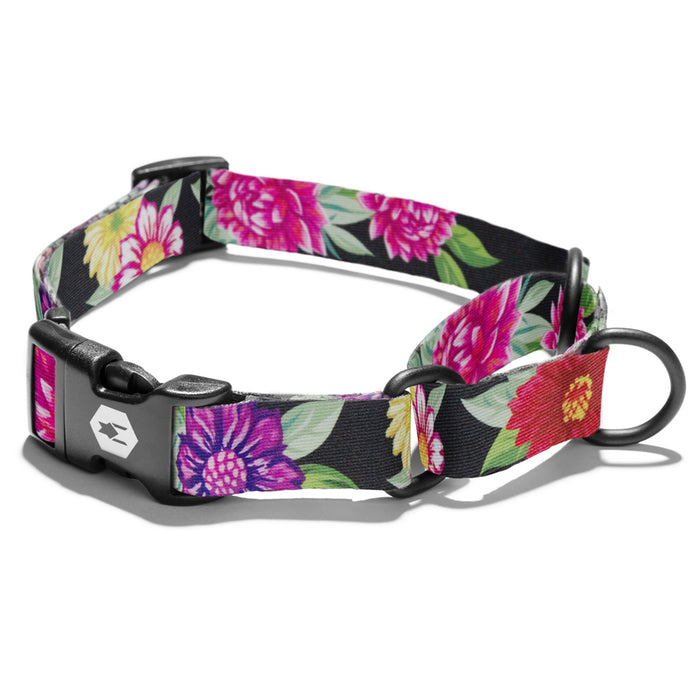 Bright floral pattern on black background on martingale collar.