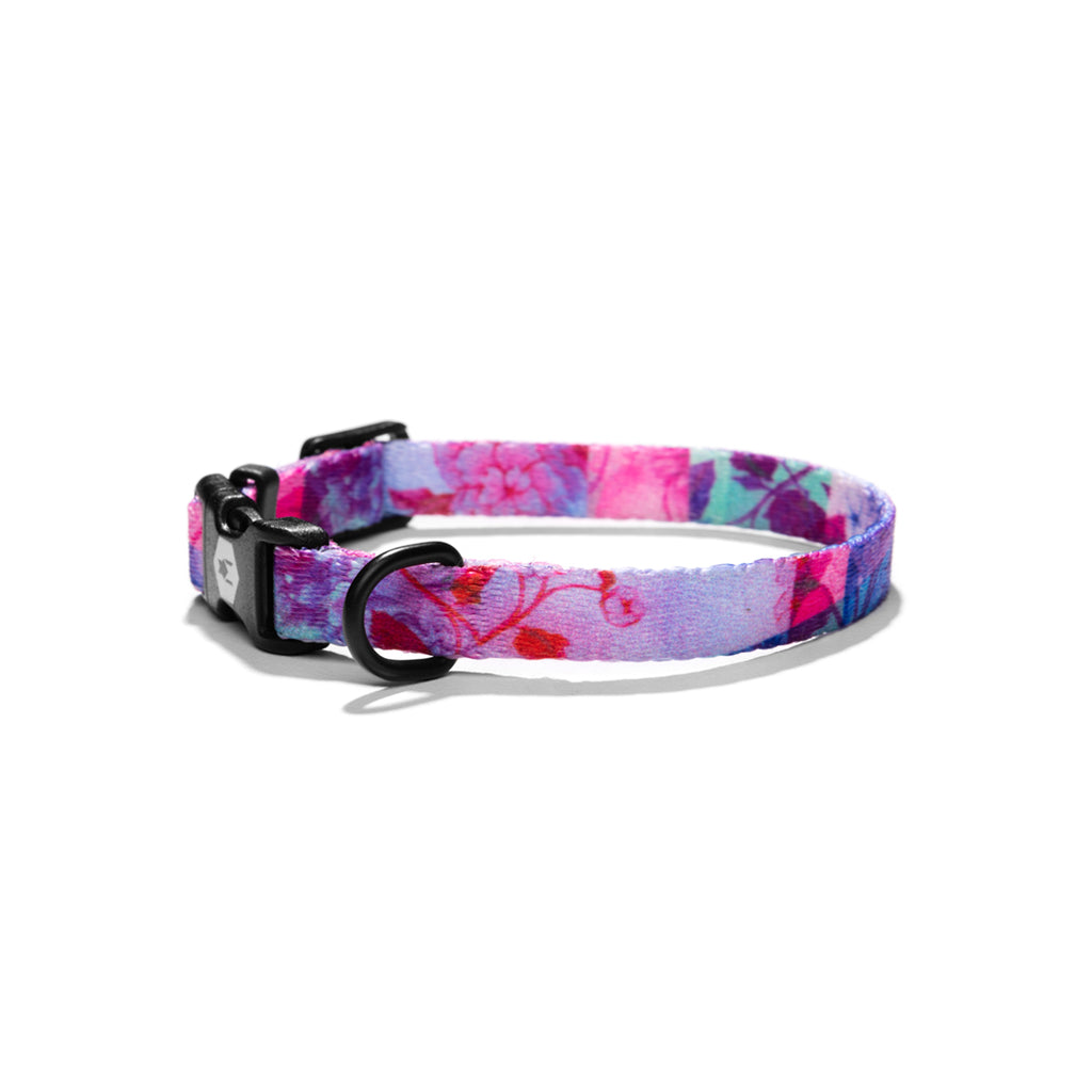 DayDream DOG COLLAR Made in the USA by Wolfgang Man & Beast