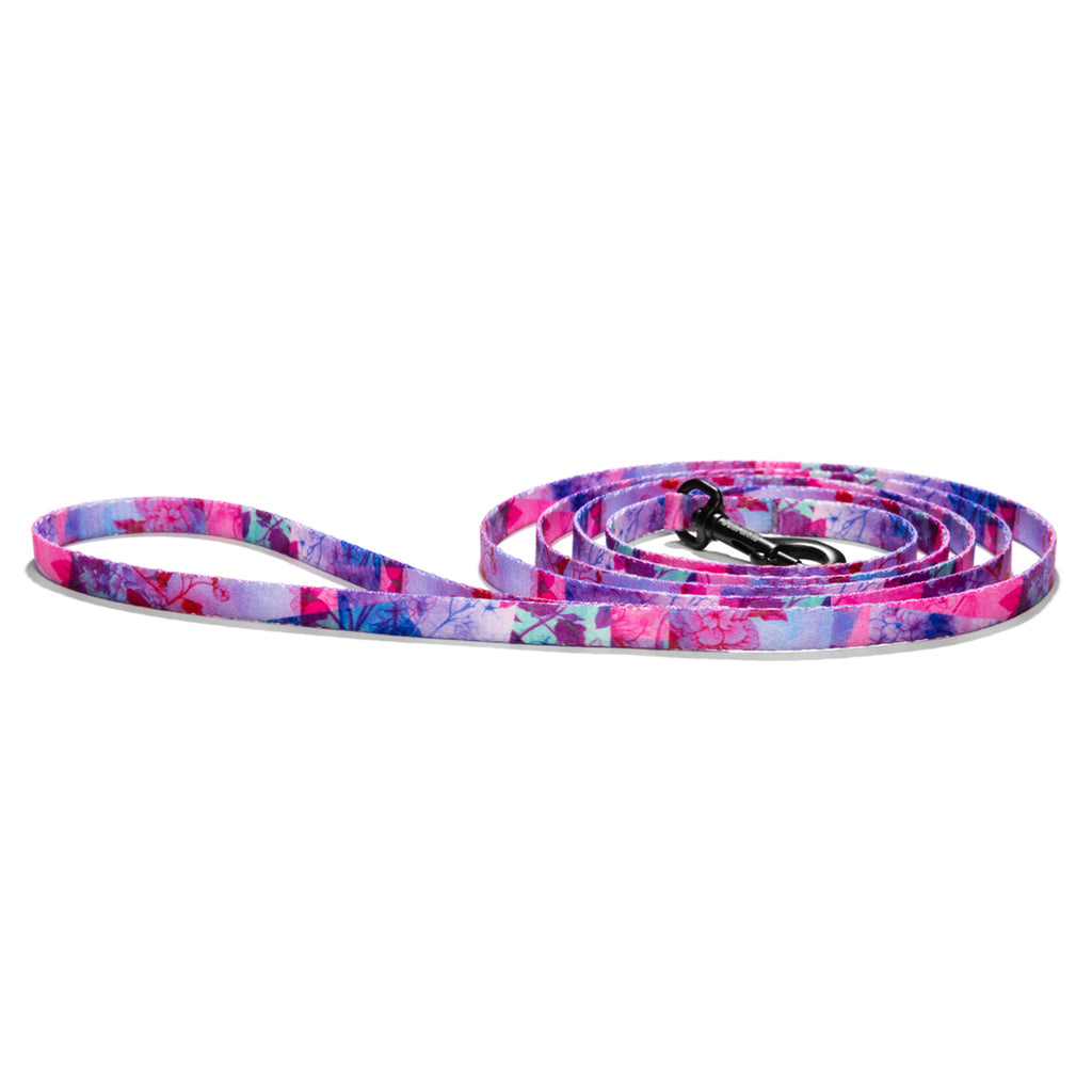 DayDream DOG LEASH-Wolfgang Man & Beast