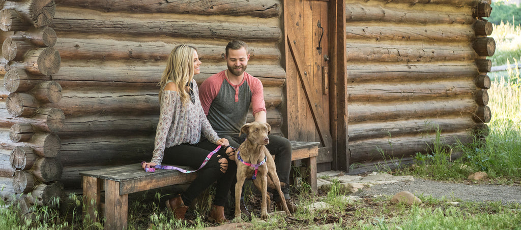 A dog wearing Wolfgang DayDream harness and leash sitting with a guy and a girl in font of a log cabin.
