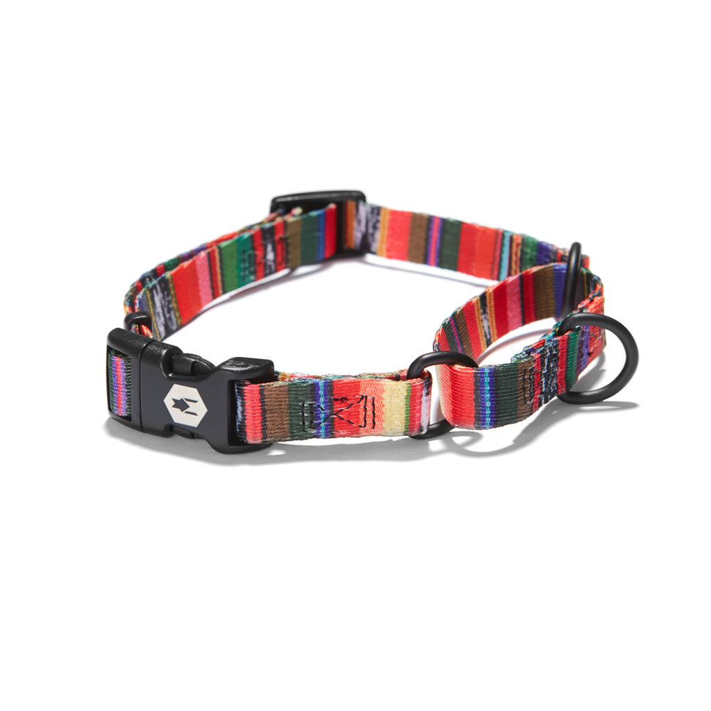 Antigua MARTINGALE DOG COLLAR Made in the USA by Wolfgang Man & Beast