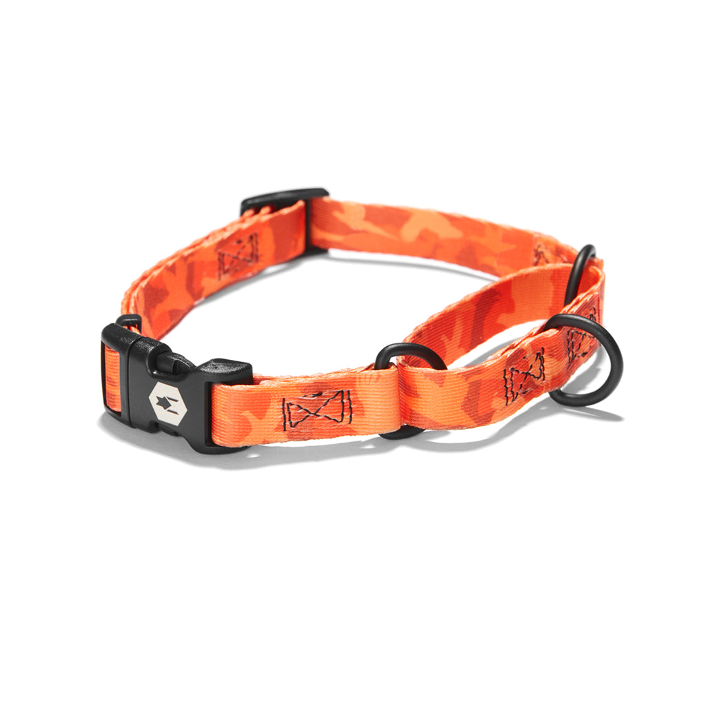 BirdDog MARTINGALE DOG COLLAR Made in the USA by Wolfgang Man & Beast