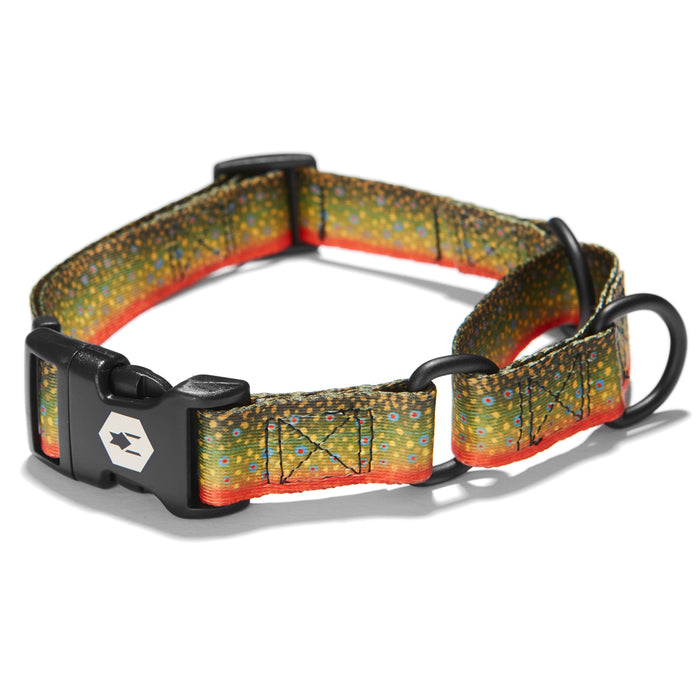 BrookTrout MARTINGALE DOG COLLAR-Wolfgang Man & Beast