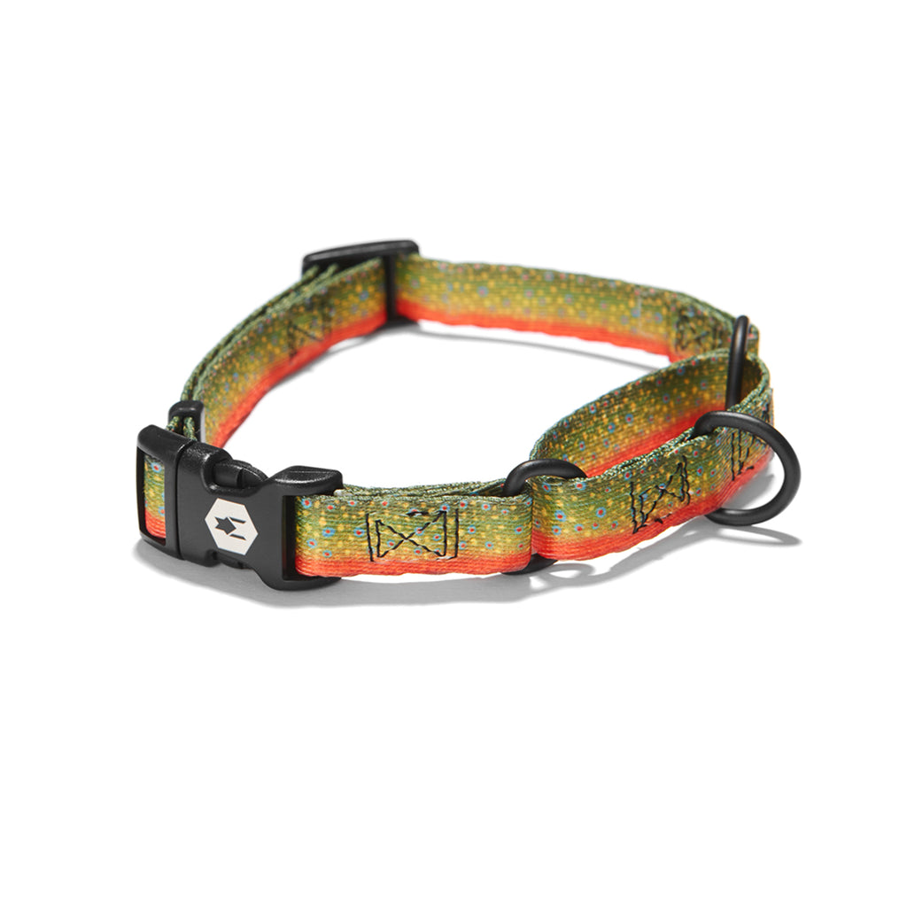 BrookTrout MARTINGALE DOG COLLAR Made in the USA by Wolfgang Man & Beast