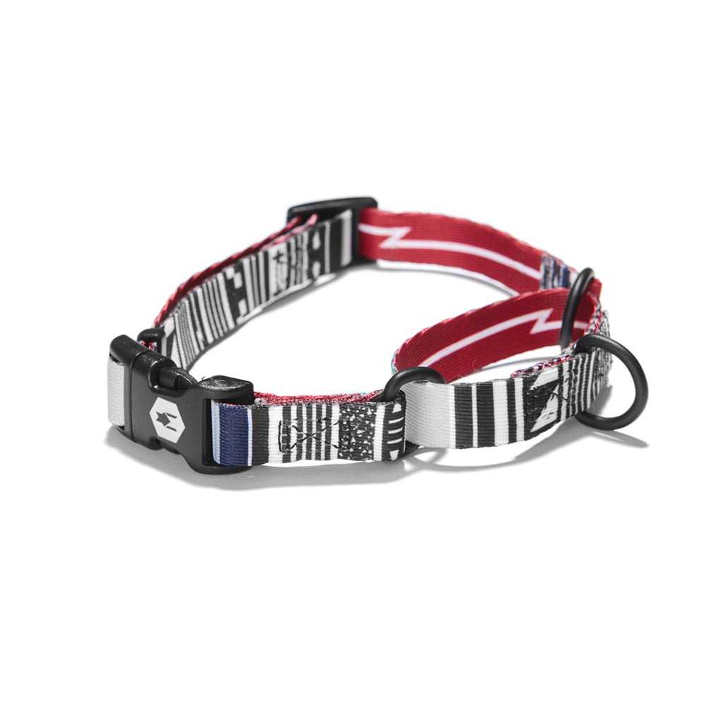 CultureShock MARTINGALE DOG COLLAR Made in the USA by Wolfgang Man & Beast
