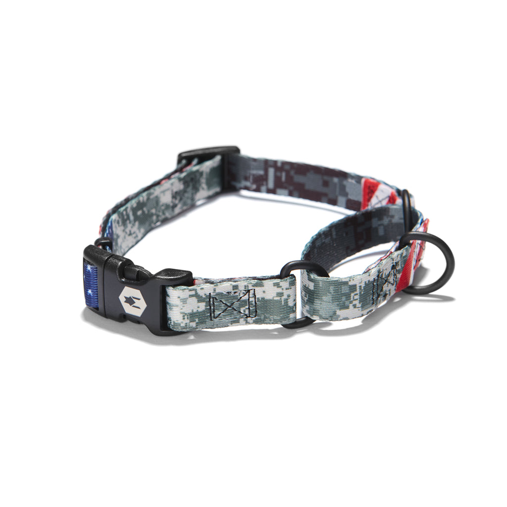 DigitalDog MARTINGALE DOG COLLAR Made in the USA by Wolfgang Man & Beast