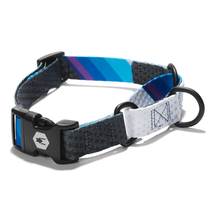 KB2019 MARTINGALE DOG COLLAR