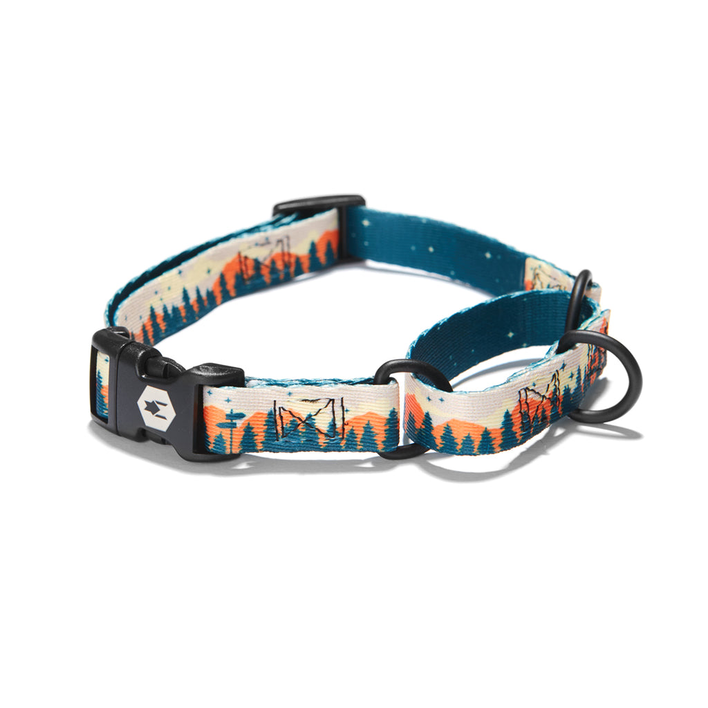 OverLand MARTINGALE DOG COLLAR Made in the USA by Wolfgang Man & Beast