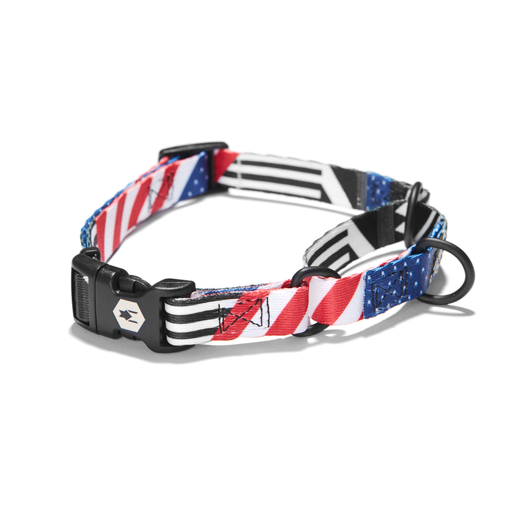 PledgeAllegiance MARTINGALE DOG COLLAR-Wolfgang Man & Beast