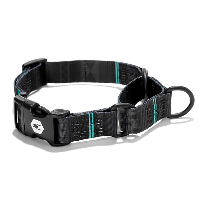 NightOwl MARTINGALE DOG COLLAR