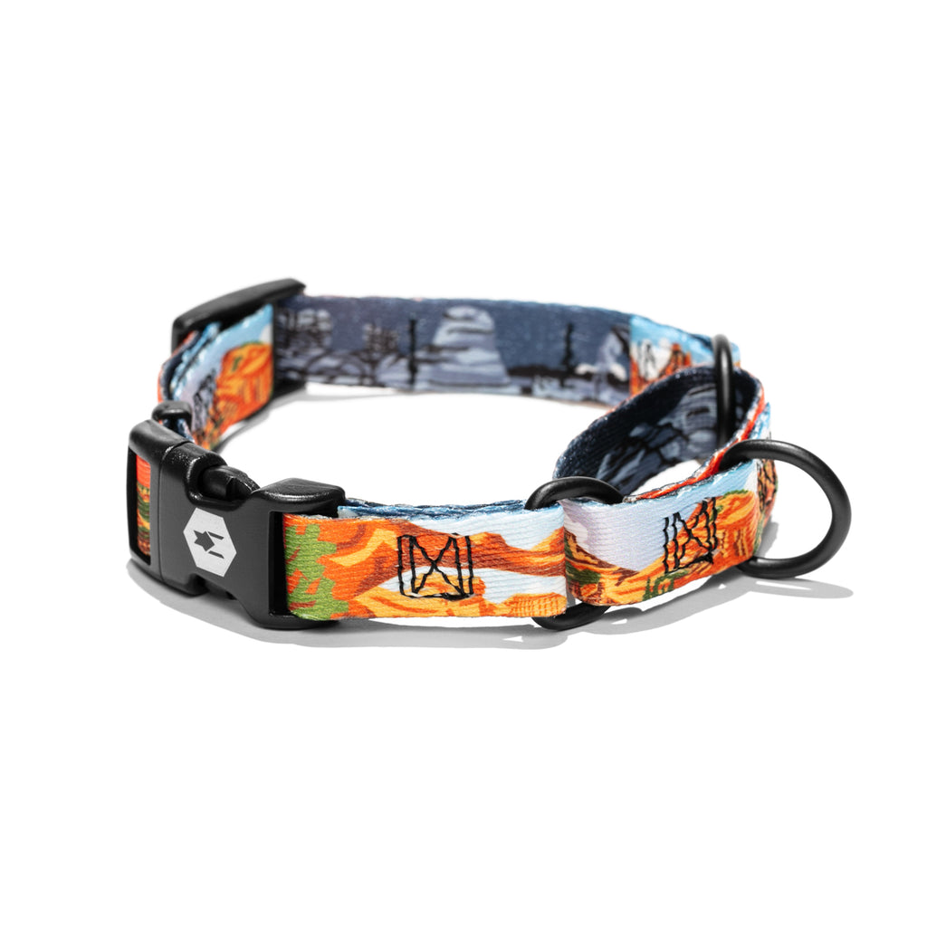 ParkLands MARTINGALE DOG COLLAR-Wolfgang Man & Beast