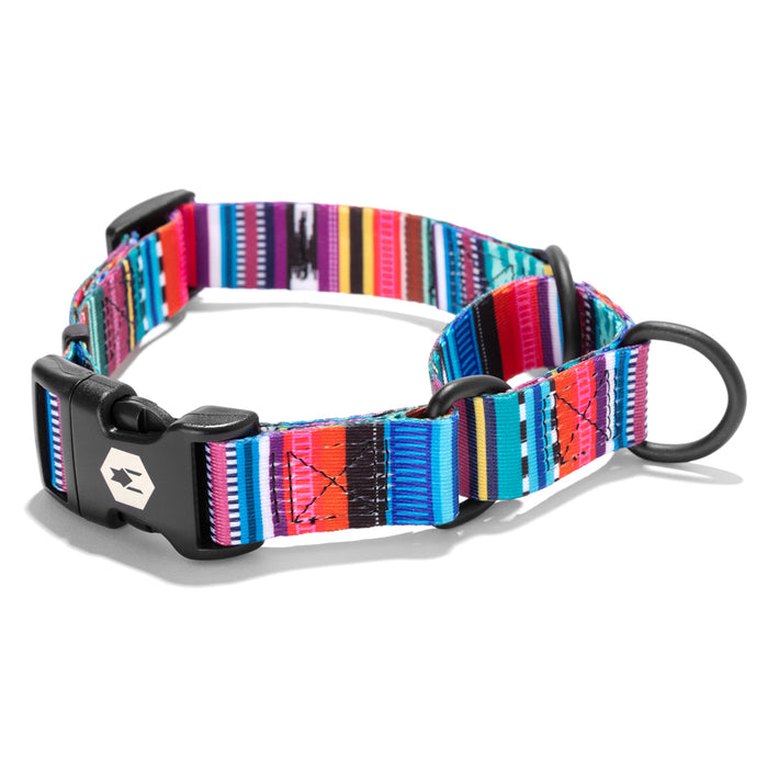 Quetzal MARTINGALE DOG COLLAR