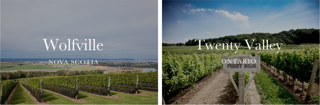 Side-by-side photo of Wolfville and Twenty Valley vineyards