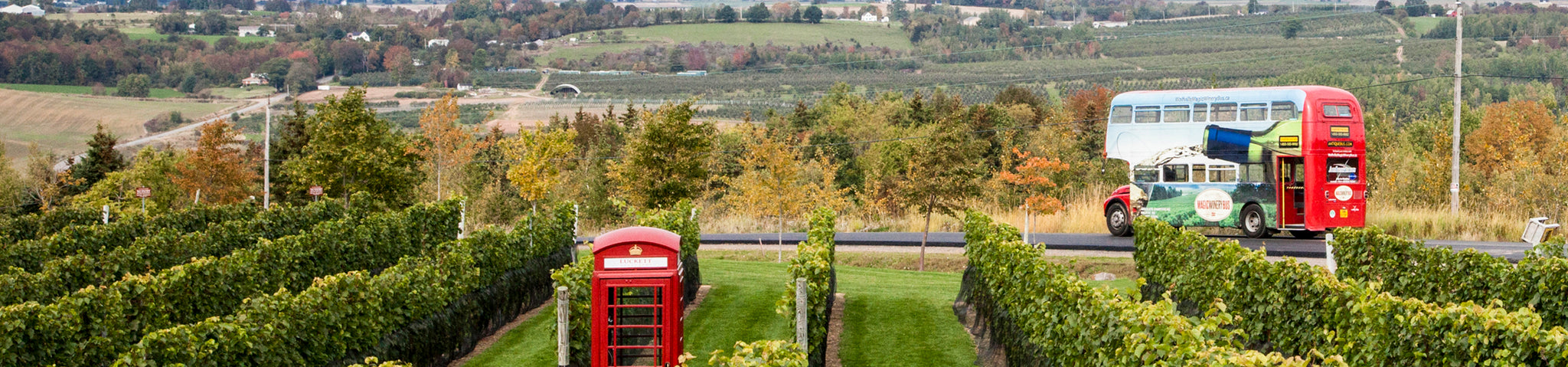 Photo of Magic Winery Bus driving through a vineyard with a red English phone booth in the foreground
