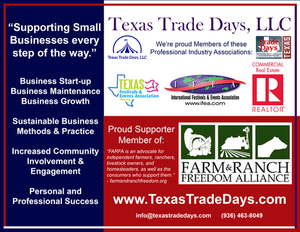 Revolutionizing Texas Small Business Markets