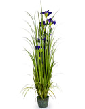 Artificial Ornamental Iris in Galvanised Pot Faux Botanical 155 cm Tall