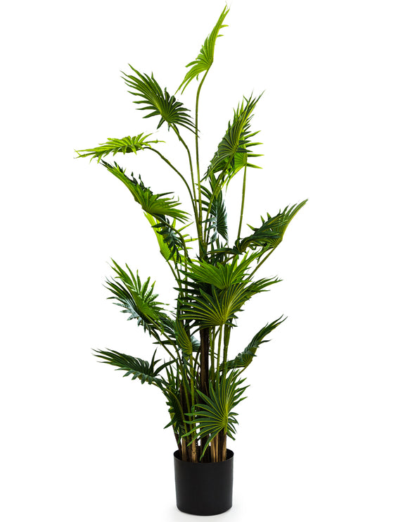 Large Artificial Plant Fan Palm in Black Pot Faux Botanical 145 cm Tall - Due April 2021