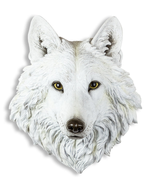 Fabulous White Wolf Head Wall Hanging - 48 cm High X 39 cm Wide X 28 cm Deep